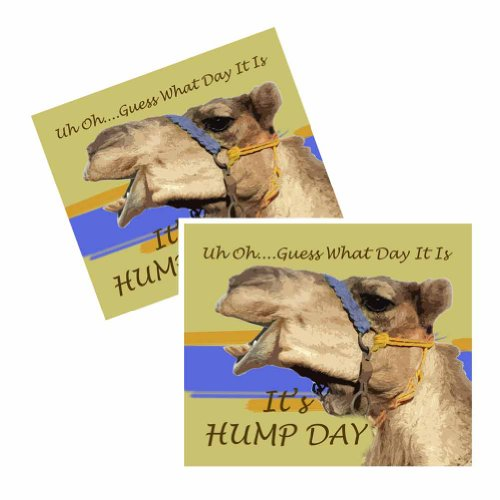 Uh Oh Guess What Day It Is. It's Hump Day - Window Decals - 4 Decals (What Is A Calendar Day)