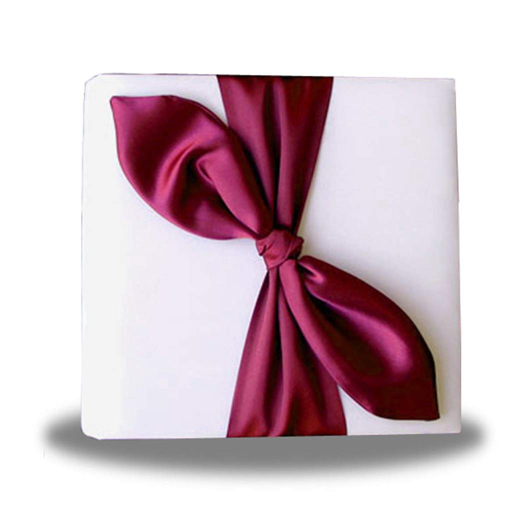 SACASUSA Gold Satin Bow Ivory Photo Album for Any Special Occasions, Great Gift by SACASUSA (Image #5)