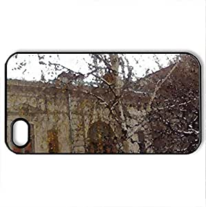 Carturesti - Case Cover for iPhone 4 and 4s (Watercolor style, Black)