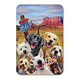 Graphics and More Route 66 Southwest Dogs Selfie Lab Retriever Westie Home Business Office Sign - Plastic - 12'' x 8'' (30.5 cm x 20.3cm)