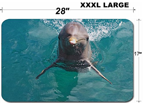 Liili Large Table Mat Non-Slip Natural Rubber Desk Pads IMAGE ID: 10195823 A wild bottlenose dolphin Turisops Truncatus looking inquisitively out of deep blue atla