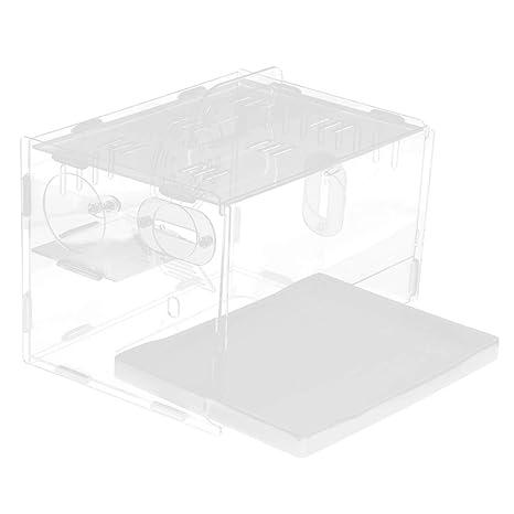 Homyl Casa de Jaula Acrílico Hámster Acrílico Nido Espacio Hábitat Cajas Transparentes - Estilo 1