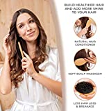 Hair Brush Boar Bristle Hair Brush Set With