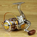 Cheap Fashion outlet 10BB Ball Bearing Saltwater/ Freshwater Fishing Spinning Reel 5.5:1 EF3000