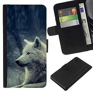 Sony Xperia Z4 / Sony Xperia Z4V / E6508 , la tarjeta de Crédito Slots PU Funda de cuero Monedero caso cubierta de piel ( White Wolf Magical Forest Nature Dog)