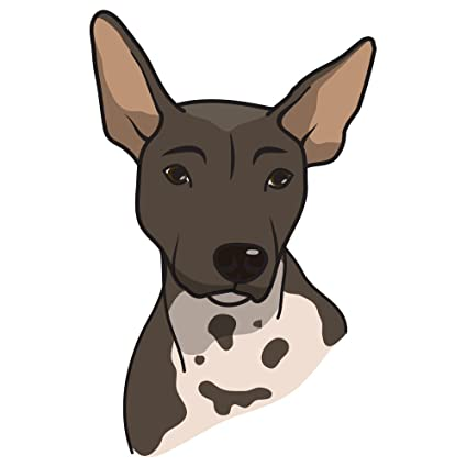Amazon Com Signmission American Hairless Terrier Decal Indoor