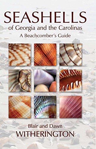 Seashells of Georgia and the Carolinas - Seashell Map