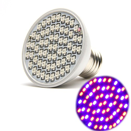 6W Led Grow Light in US - 7