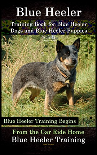 Blue Heeler Training Book For Blue Heeler Dogs And Blue Heeler Puppies By Dg This Dog Training Blue Heeler Training Begins From The Car Ride Home