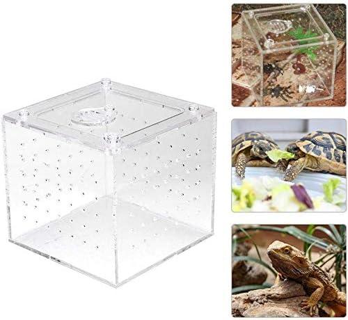 Caja de reproducción de reptiles acrílicos, Transparente ...