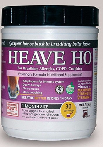 Equine Horse Heave Ho for Heaves, Chronically Allergic Airway, COPD, Asthma Flavor: Molasse