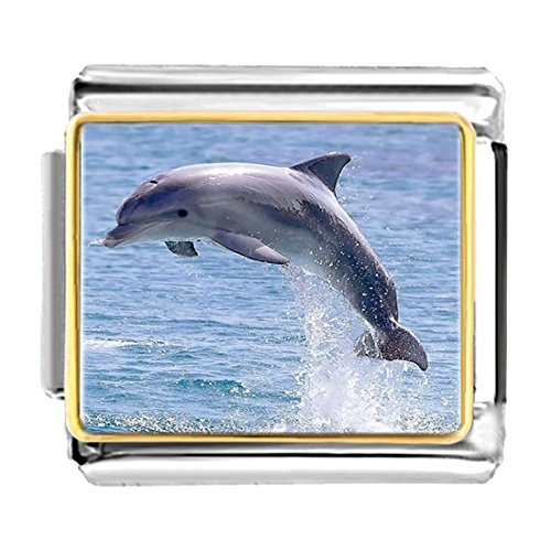 - GiftJewelryShop Gold Plated Cute Jump Dolphin Bracelet Link Photo Italian Charms