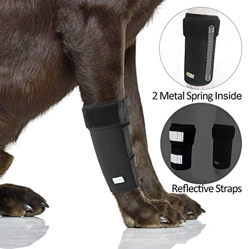 IN HAND Dog Leg