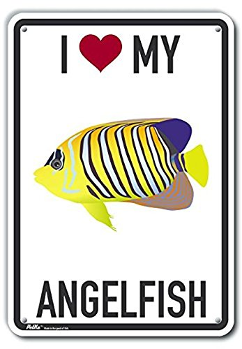 PetKa Signs and Graphics PKAS-0311-NA/_10x14I Heart My Angelfish Aluminum Sign 10 x 14 0.04 Width