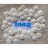 "Tumbler Home Certified Small Natural White Sand Dollars 50 Pcs - Wedding - Sea Shell Craft 1/2"" to 1"" - Hand Picked and Professionally Packed"
