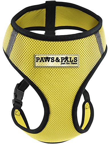 easy cat harness - 3