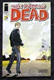 Walking Dead #75 Exclusive Variant Cover 2010 SDCC