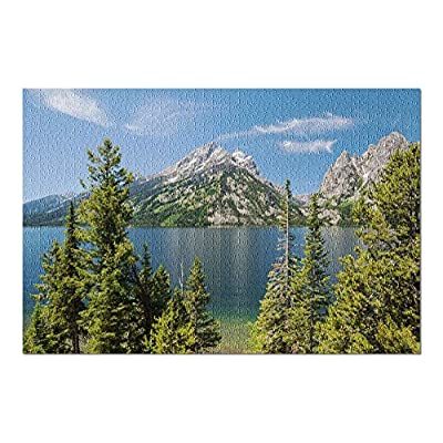 Grand Teton National Park, Wyoming - Jenny Lake 9001300 (Premium 1000 Piece Jigsaw Puzzle for Adults, 20x30, Made in USA!): Toys & Games