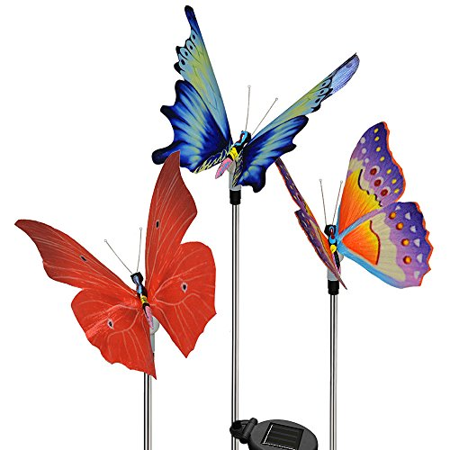 Chameleon Solar Lights in Florida - 2