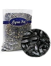 Lyra Pet® 25 kg Sonnenblumenkerne schwarz Wildvogelfutter Vogelfutter Ernte 2019