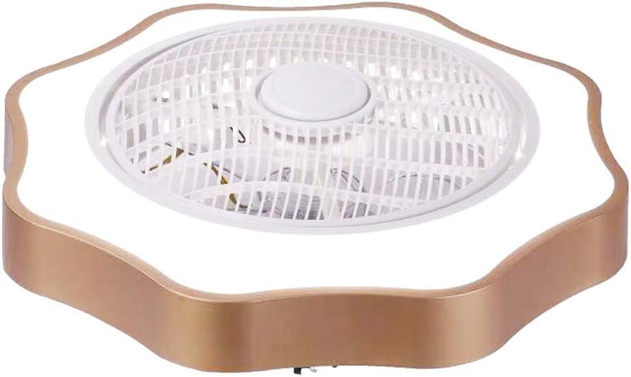 Lilideni Ventilador de Techo con iluminación Luz LED Atenuación Gradual Control de Velocidad del Viento Ajustable sin batería Luz de Techo LED Moderna para Dormitorio Sala de Estar Comedor