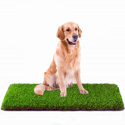 MTBRO Artificial Grass Professional