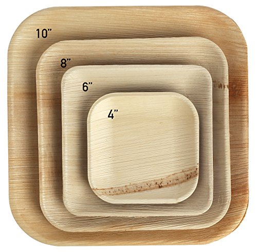 Brheez Palm Leaf Disposable Bamboo Like SQUARE 10 Inch -Natural Color - Elegant Sturdy PLATES Biodegradable, Compostable And Chemical Free, Natural Alternative To Plastic And Paper - Pack of 25 ()