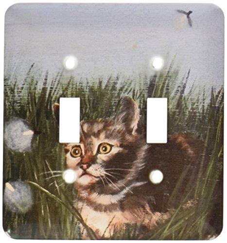 3dRose Lsp_44352_2 - Interruptor de doble pulsador para conducción de gatos en césped