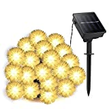 carelove Warm White Dandelion Outdoor Solar String Lights, 8Mode 20 LED 21ft Decorative Christmas Fairy Globe Light for Indoor Party,Wedding Decoration,Patio,Garden,Holiday,Tree Decor