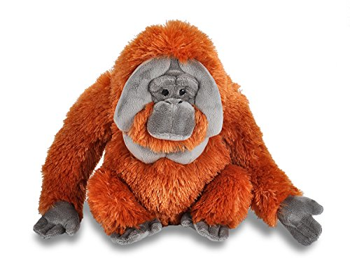 - Wild Republic Orangutan Plush, Stuffed Animal, Plush Toy, Gifts for Kids, Cuddlekins 12 Inches