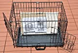 """Cool Runners Tall Boy Large Wire Pet Crate 30"""" x"""