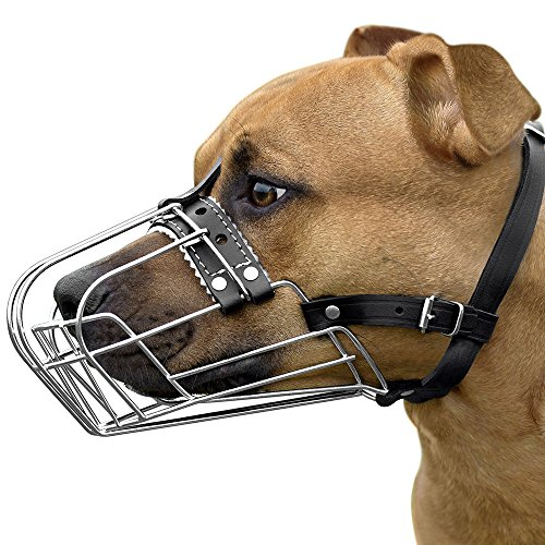 BronzeDog Pitbull Dog Muzzle Wire Basket Amstaff Pit Bull Metal Mask Adjustable Leather Straps (M)