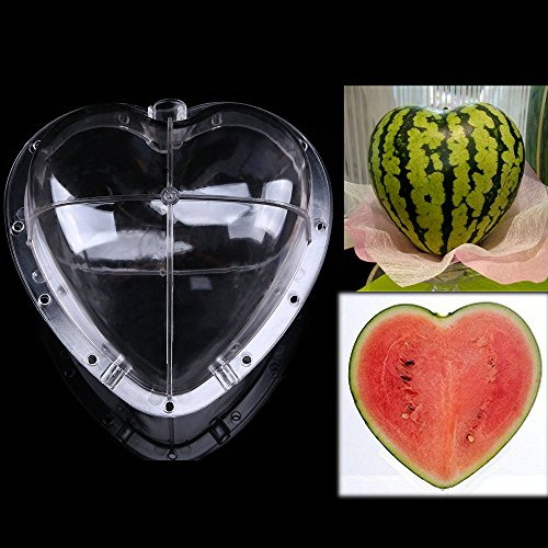 Fruit Mold - WCIC 2-Pack Big Heart Growing Heart Shaped Sapodilla Watermelon Mold Garden Shaped Fruit Mould Tool With 11 Screws