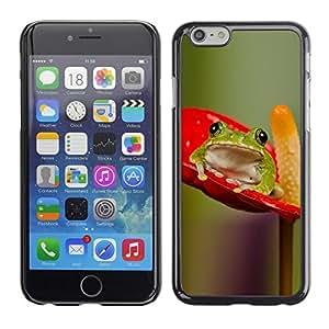 TopCaseStore / la caja del caucho duro de la cubierta de protección de la piel - Anthurium Red Green Nature - Apple iPhone 6 Plus 5.5