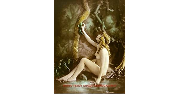 "Nude Woman Enters Pond 8.5x11/"" Photo Print Lovely Modern Art Photography"
