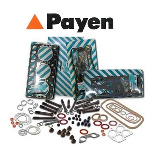 PAYEN NA5035 Wellendichtring, Nockenwelle Federal-Mogul Friction Product GmbH