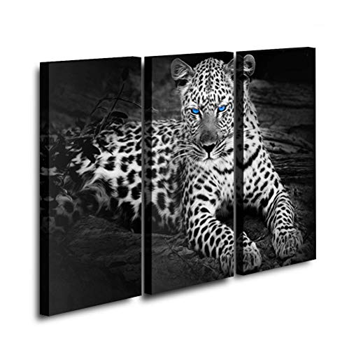 sunfrower 3 Panel Black and White Leopard Wall Art Painting Blue Eyes Prints on Canvas Animal Picture Home Modern Decoration Print Decor Stretched and Framed Ready to Hang - 16