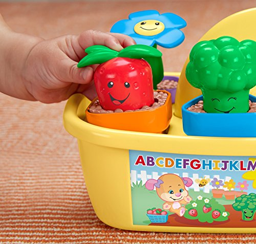 51WoJ3QhWWL - Fisher-Price Laugh & Learn Smart Stages Grow 'n Learn Garden Caddy (Amazon Exclusive)