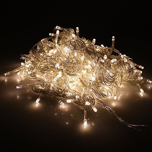 Ecosmart Christmas Lights