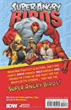 Angry Birds: Super Angry Birds