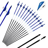 """SinoArt 30-Inch Carbon Arrows 2"""" Blazer Vane 7.8mm Shaft Removable with Field Points Replaceable Tips for Recuve & Compound Bow ( Pack of 12)"""