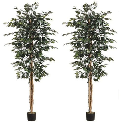 6.5' Artificial Ficus Tree In Pot Silk Plant Decor Palm (Pack of 2) by Black Decor Home