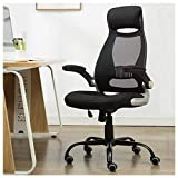 Zenith High Back Mesh Office Chair with Adjustable Armrest Lumbar Support Headrest Swivel Task Desk Chair Ergonomic Computer Chair (Black)