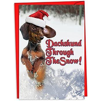 Amazon.com: Lynch 12 Christmas Cards: Dachshund (Doxie