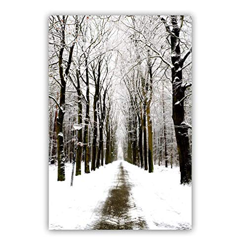 (Studio 500 Museum Quality Wall Art - The Snow Path to The Mysterious Forest 32wx48h, High-Resolution Giclee Printing, Silver Prepress on Canvas Wrap, Landscape Collection, B2709)