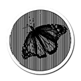 Butterfly - Large 11 Inch CineSpinner - Animated Suncatcher by Eye Think
