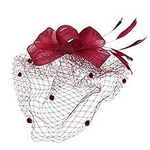 MagiDeal Wedding Bridal Face Veil Hair Net Feather Fascinator Headpiece Headwear - Wine Red