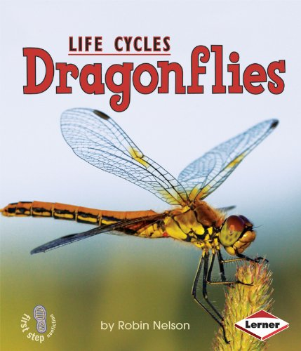Dragonflies (First Step Nonfiction Animal Life Cycles)