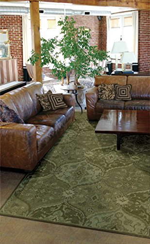- Nourison India House (IH88) Green Rectangle Area Rug, 2-Feet 6-Inches by 4-Feet  (2'6