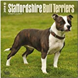 Staffordshire Bull Terriers 18-Month 2014 Calendar (Multilingual Edition)